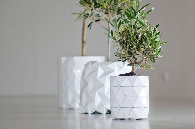 Growth decoration