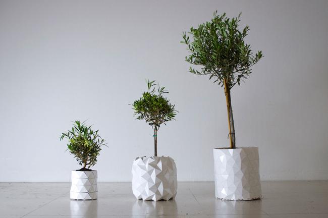 Growth terrasse ou jardin